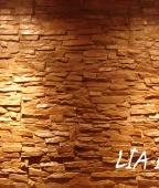 lia-interior